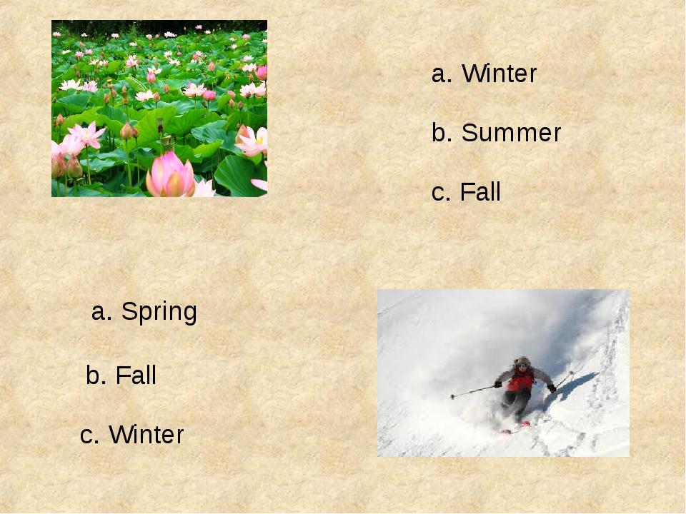 a. Winter b. Summer c. Fall a. Spring b. Fall c. Winter