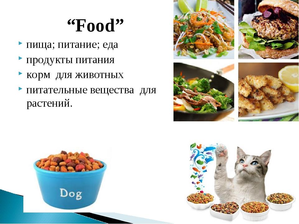 """""""Food"""" пища; питание; еда продукты питания корм для животных питательные веще..."""
